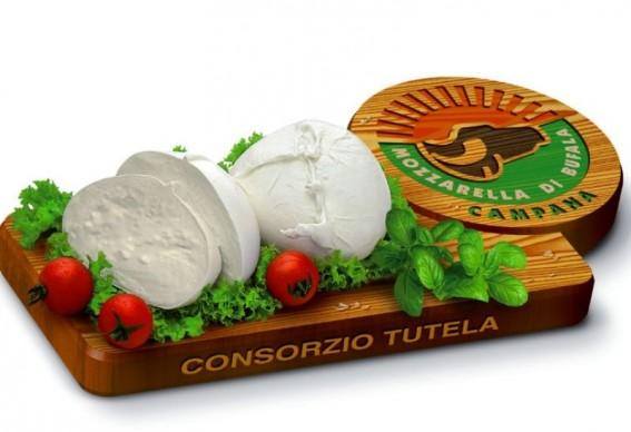 mozzarella-bufala-dop-567x388