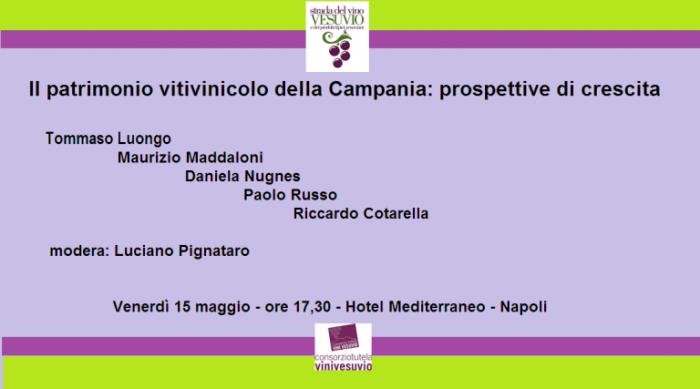 Convegno-sul-patrimonio-vitivinicolo-campano-e1431417744919