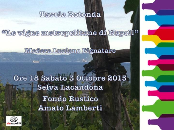 Le vigne metropolitane di Napoli